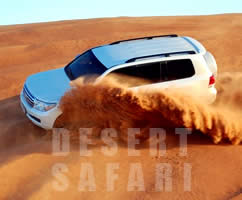 Desert Safari Sharing
